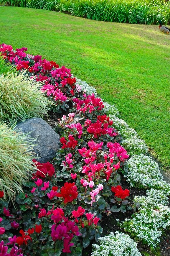 Check out this backyard landscaping idea and more great tips on @worthminer
