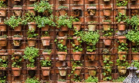 55 backyard landscaping ideas you ll fall in love with for Cheap vertical garden