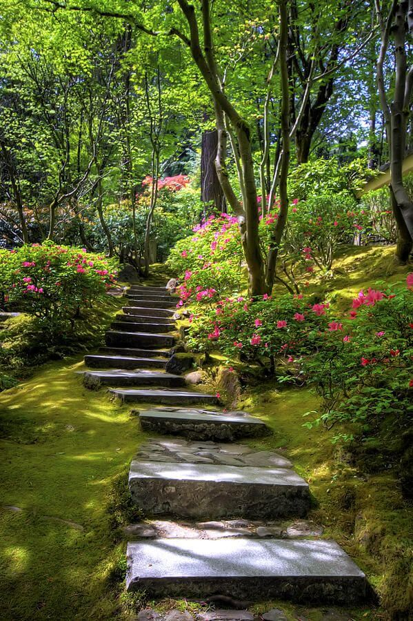 80 Must-See Garden Pictures That Inspire | Page 76 of 80 ...