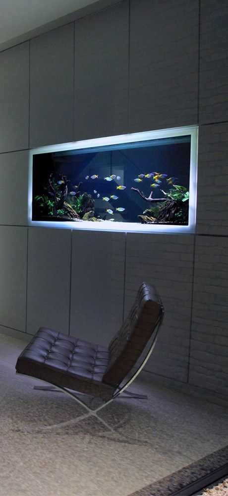 Home Aquarium Design Ideas: 15 Amazing Ideas With Interior Aquariums