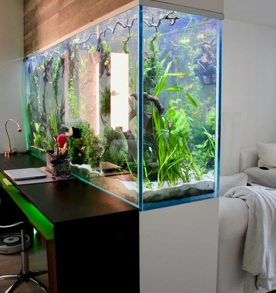 Check out these amazing ideas with aquarium.